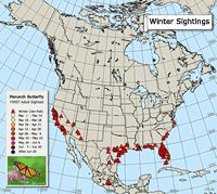 Monarch Butterfly Migration Map - shows sightings of the 1st monarch butterfly of the year, & links to other Monarch data.
