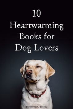 10 books about dogs that will warm your heart and wet your eyes.