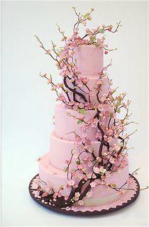 Cake & Caboodle: Рон Бен-Израиль