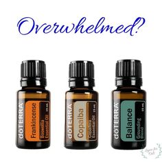 This blend of Frankincense, Copaiba and Balance (from doTERRA) is perfect in the diffuser or applied topicallyfeeling overwhelmed? This blend of Frankincense, Copaiba and Balance (from doTERRA) is perfect in the diffuser or applied topically Helichrysum Essential Oil, Essential Oils 101, Essential Oil Diffuser Blends, Therapeutic Grade Essential Oils, Oils For Energy, Doterra Oils, Doterra Blends, Aromatherapy Oils, Osho