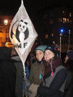 Earth Hour 2013, Brighton