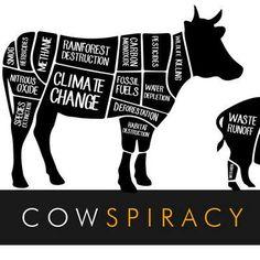 reasons to be vegan ~ courtesy Cowspiracy