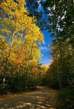 autumn, Baxter State Park, Maine