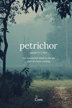 Petrichor. The wonderful smell in the air after it's been raining. #design #wordoftheday