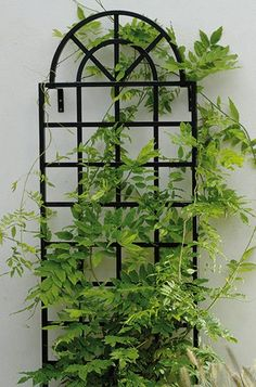 Metal Wall Trellis spanish style iron wall arbor with bouganvilla, this could also be
