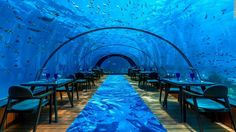 5.8 Undersea Restaurant in the Maldives is the world's largest all-glass underwater eatery. A seven-course meal comes with a view of teeming sealife.