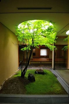 30 Amazing Modern Japanese Garden Design Ideas (for Home, Office, etc. Home Garden Design, Home And Garden, House Design, Garden In House, Inside Garden, Garden Leave, House Gardens, Patio Interior, Home Interior Design