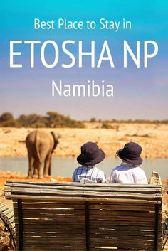 The best places to stay in Etosha National Park in Namibia. Don't book your Namibia trip without reading this first! Africa Destinations, Travel Destinations, Holiday Destinations, Travel With Kids, Family Travel, Travel Guides, Travel Tips, Travel Books, Travel Journals