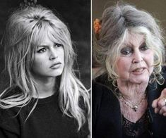 Brigitte Bardot, Women of the Then and Now- Vieillir en beauté Celebrities Then And Now, Beautiful Celebrities, Young Celebrities, Beautiful Actresses, Actrices Hollywood, Curly Hair Men, Famous Women, Old Hollywood, Movie Stars