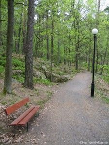 Hisingsparken/Slätta damm. Ett vildmarksområde på resterna av en anlagd park, Göteborgs största parkområde. Nära stan men Hisingsparken med S A Hedlunds park och Slätta damm är vidsträckt och avskilt från de stora trafiklederna i omgivningarna.