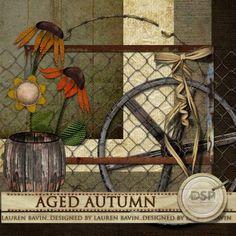 Aged Autumn [DL-LB-K-AgedAutumn]
