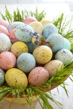 7 ingenious egg decorating ideas, easter decorations, seasonal holiday d cor Hoppy Easter, Easter Bunny, Easter Eggs, Easter Table, Easter Dinner, Speckled Eggs, Easter Egg Crafts, Easter Decor, Easter Ideas