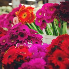 153 best la flower district images on pinterest flowers summer the la flower district is focused along street where virtually every variety of fresh cut flower can be found the la flower market the largest flower mightylinksfo
