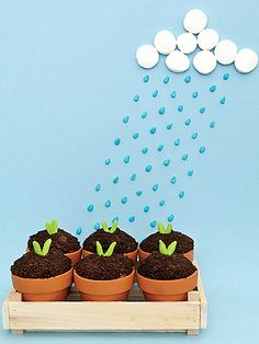 Treat of the Month: Sweet Seedlings (via Parents.com)