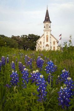 Sts Cyril & Methodius Church rises over a field of bluebonnets on Thursday, March in Dubina, Texas. Pool / Houston Chronicle ) Photo: Smiley N. Old Country Churches, Old Churches, Abandoned Churches, Abandoned Cities, Catholic Churches, Abandoned Mansions, Church Pictures, Take Me To Church, Cathedral Church