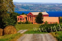 Lamoreaux Landing winery in the Finger Lakes, New York, featured in Decanter news story about increasing UK imports of Finger Lakes wine.