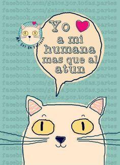 ilustraciones gatos pinterest - Buscar con Google