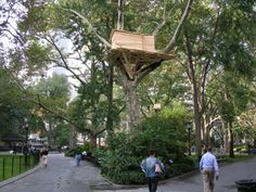 """See 13291 photos from 74206 visitors about squirrels, flatiron building, and barbecue. """"A wonderful park for a sunny day with plenty of seating and. Park In New York, Flatiron Building, Madison Square, Four Square, Sunny Days, Environment, Study, Plants, Planters"""