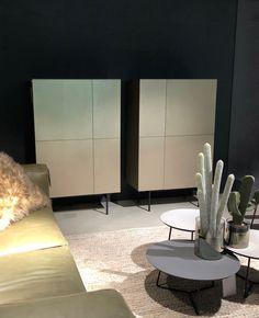 2 cabinets from Coesel, model Capri showed in Gold metallic dealer: Mobiel interieur Andijk #mobiel interieur#Coesel collection #Left Label collections #Capri #Gold