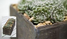 How to make a slate planter - Projects: Garden DIY - gardenersworld.com