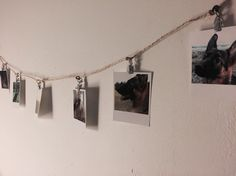 Just made this awesome Polaroid photo decoration of our dogs ❤️ #polaroid #homedecoration #decoration #printic #pictures