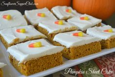 Pumpkin Sheet Cake from Sunflower Supper Club Pumpkin Sheet Cake, Supper Club, Canned Pumpkin, Fancy Cakes, Coffee Cake, Cupcake Cakes, Cupcakes, Just Desserts, Fall Recipes