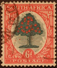 South Africa African Life, African History, West Africa, South Africa, Vintage Safari, Flower Stamp, Africa Travel, Mail Art, Stamp Collecting