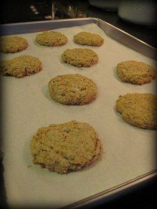 Rolled Oat Breakfast Cookies