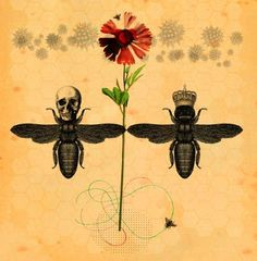 'More Than Honey' illustration by 2014 V&A Editorial Illustration Awards entrant Matthew Richardson l Victoria and Albert Museum #art #illustration