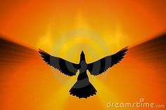 Phoenix Rising - Download From Over 36 Million High Quality Stock Photos, Images, Vectors. Sign up for FREE today. Image: 5043292