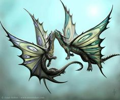 Butterfly dragons...They're so pretty and elegant. <3