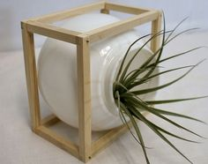 Unique light globe into planter #DIY for inside or outside your home. #WhyReStore