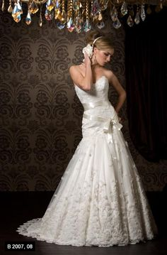 Wedding Dress of my dreams! don't think i could buy any dress without first trying this one on. Pnina Tornai