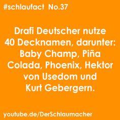 #fakten #fakt #facts #youtube #youtuber #schlaufact