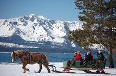 Take a sleigh ride