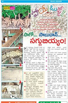 Hindu Vedas, Telugu Inspirational Quotes, English Grammar Rules, Foods With Iron, Food Vocabulary, Gk Knowledge, Vegetable Curry, Natural Health Remedies, Health And Beauty Tips