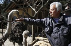 Naoto Matsumura, of Japan, for caring for animals left behind....