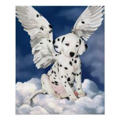 Image result for ANGEL HOLDING DALMATIAN