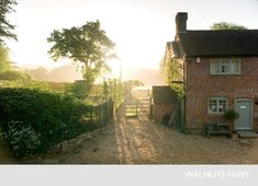 Morning light at Walnuts Farm in East Sussex