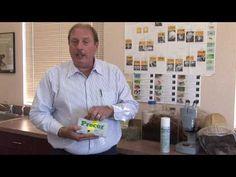Get rid of fleas in house