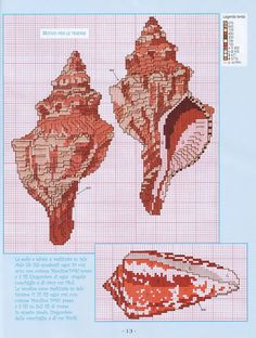 Gallery.ru / Фото #12 - 961 - Yra3raza Cross Stitch conch shell