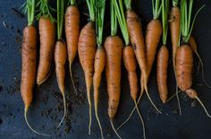 Your Guide To Growing Carrots  http://www.rodalesorganiclife.com/garden/your-guide-growing-carrots