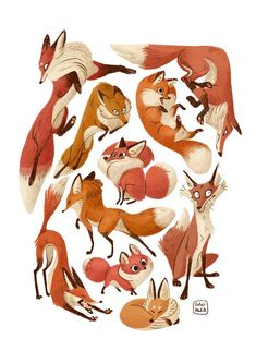 Foxes animal character design and concept art illustration.
