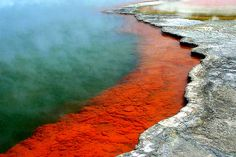 Did you know: Sculptured out of volcanic activity and thousands of years in the making, Wai-O-Tapu Thermal Reserve is considered to be New Zealand's most colourful and diverse geothermal sightseeing attraction. You are introduced to a uniquely different natural landscape – the key to what you see lies below the surface – one of the most extensive geothermal systems in New Zealand.