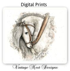 Andalusian Horse Gray  Watercolor  Artist by VintageNestDesigns