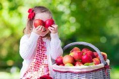 Eibe mit fr chten blogbeitr ge pinterest hecken for Gartengestaltung janzen