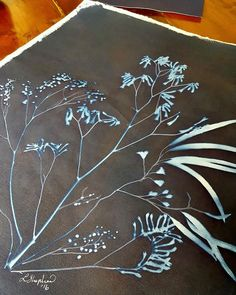 Lisa Shepherd, Textile illustrator and printer. Off to be framed. Australian Native Flowers, Kangaroo Paw, Textile Artists, Textile Design, Indigo, Printer, Illustrator, Solar, Neutral