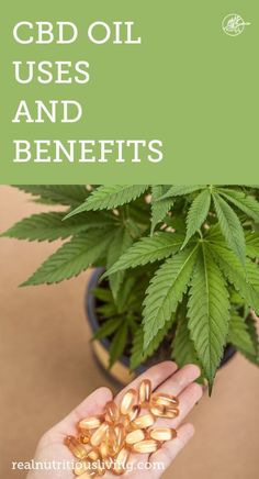 CBD Oil Uses and Benefits - Real Nutritious Living