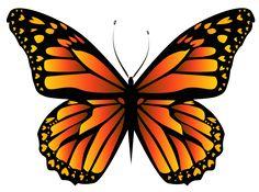 Orange Butterfly PNG Clipar Image