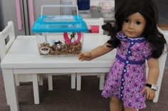 DIY version of McKenna's Hamster american-girl-doll-crafts